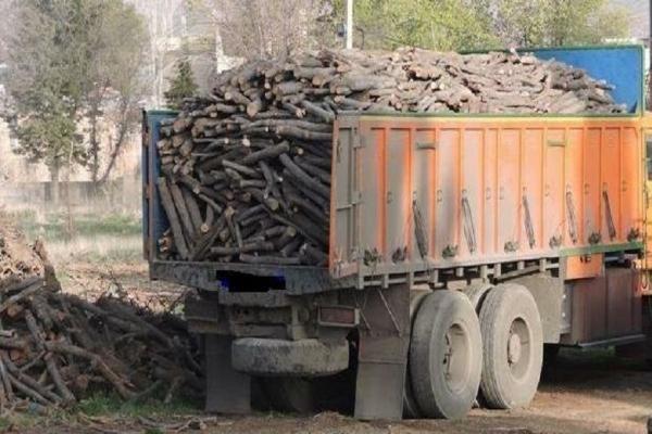 کشف دو محموله نوزده تنی چوب قاچاق در شهرستان سرپلذهاب